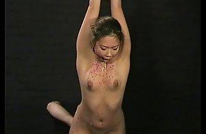 Split-second kokos japanese tit..