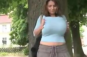 Big Big Big Chest Cougar Outdoor